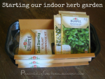 Start An Indoor Herb Garden {Herb Garden Series}