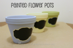 DIY: Painted Flower Pots