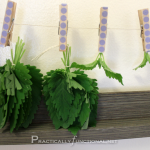 Herb drying the easy way