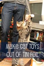 Tin Foil Cat Toys