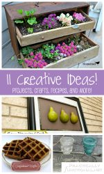 11 Creative Ideas! | Projects, Crafts, Recipes, and More!