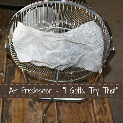 Quick And Easy Air Freshener from I Gotta Try That...