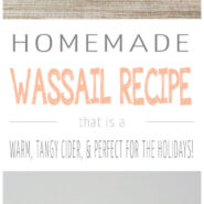 This wassail recipe is a warm, tangy cider that is the perfect holiday party drink! Easy to make in large batches in your slow cooker!