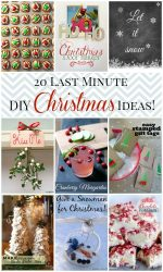 20 Last Minute Christmas Ideas!