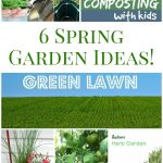 6 Spring Gardening Ideas & Resources!