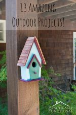 13 Amazing Outdoor Projects!