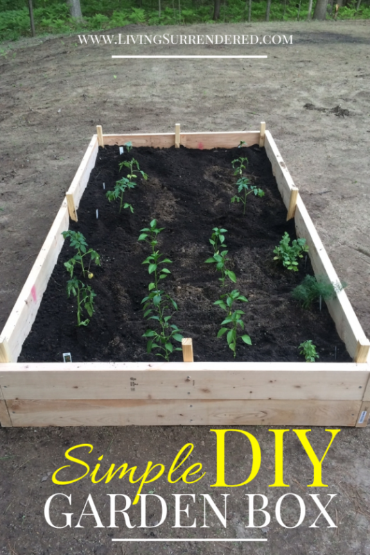 DIY Garden Box by Living Surrendered