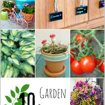 10 Projects for the Garden