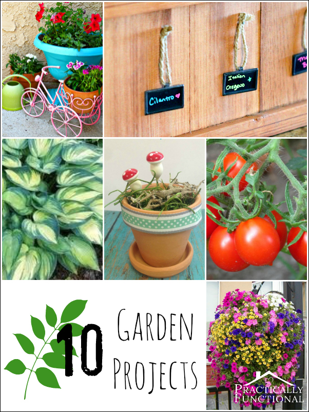 From great gardening tips to gorgeous planters, here are ten projects for your garden!
