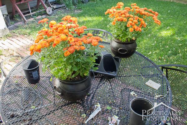 Turn A Plastic Cauldron Into A Planter!-4