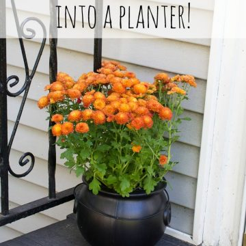 Turn A Plastic Cauldron Into A Planter!
