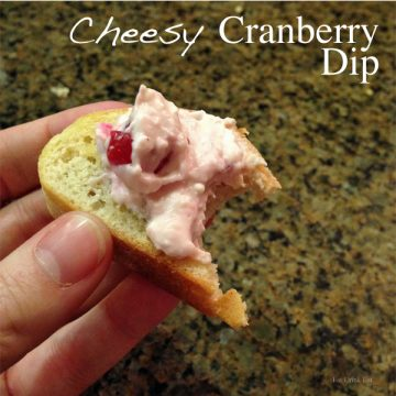 Warm And Cheesy Cranberry Dip