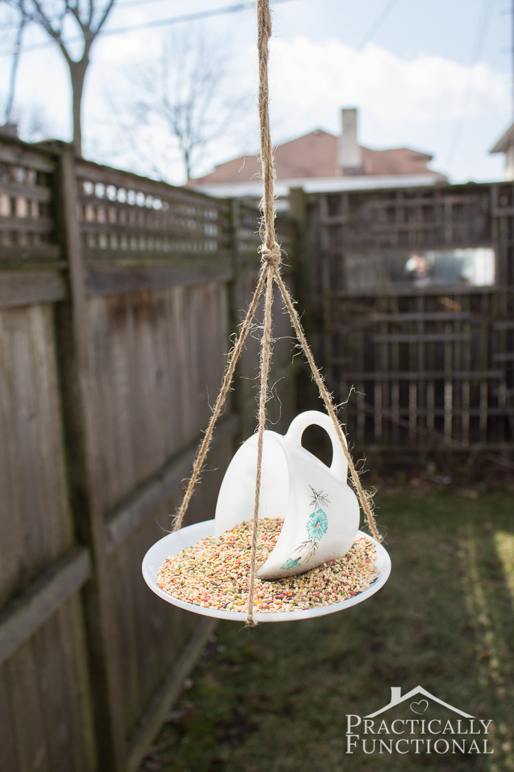 teacup and saucer bird feeder hanging from twine in backyard
