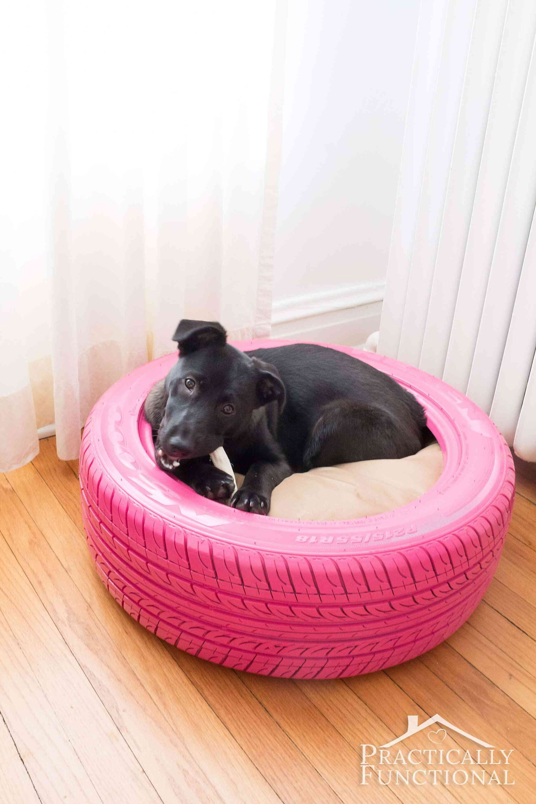 Diy Dog Bed From A Recycled Tire Practically Functional
