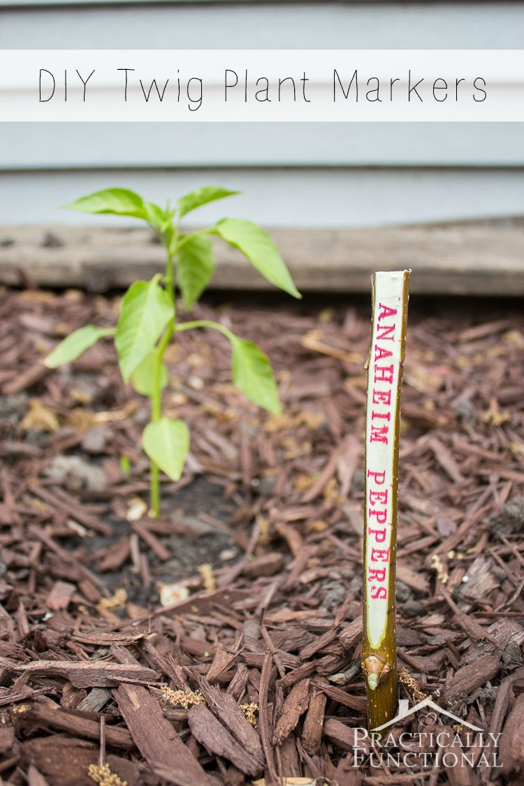 DIY Twig Plant Markers For Your Garden!