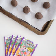 diy wildflower seed bombs made with wildflower meadow mix seeds, air dry clay, and dirt