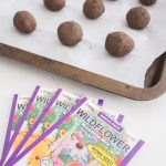 homemade wildflower seed bombs made with wildflower meadow mix seeds, air dry clay, and dirt