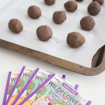 How To Make Seed Bombs!