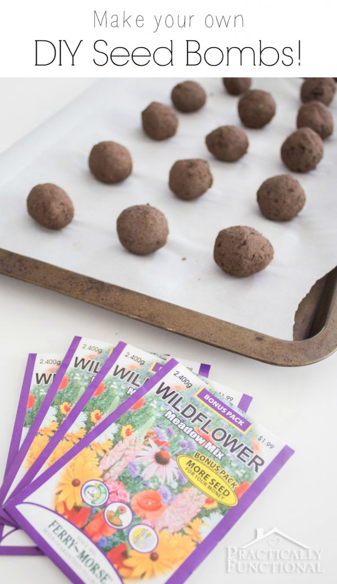 homemade wildflower seed bombs made with air dry clay