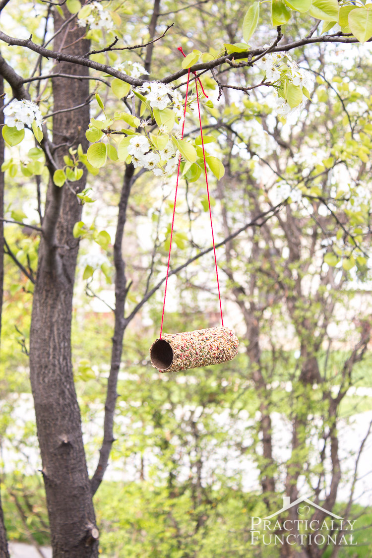 homemade bird feeder made from a toilet paper roll, peanut butter, and a bird seed