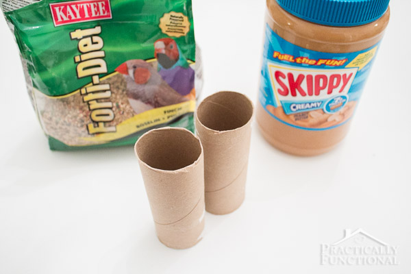 bird seed, toilet paper rolls, and peanut butter needed to make a diy bird feeder