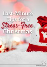Last Minute Tips for a Stress Free Christmas