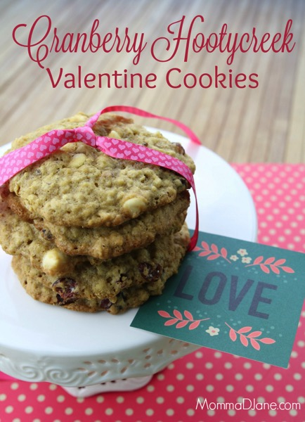 Cranberry Hootycreek Valentine's Day Cookies Recipe - and 24 other delicious Valentine's Day treats!
