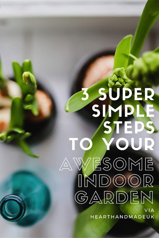 3 super simple steps to your awesome indoor garden - and 11 other festive DIY spring projects!