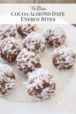 No Bake Cocoa Almond Date Energy Bites