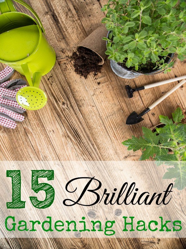 15 brilliant gardening hacks - and ten other amazing DIY outdoor projects to try this spring!