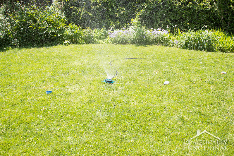 How Long To Water Your Lawn 3