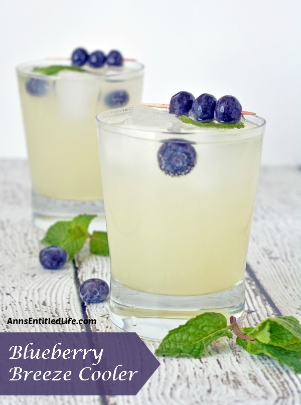 Blueberry breeze cooler recipe - and 15 other delicious summer drink recipes!