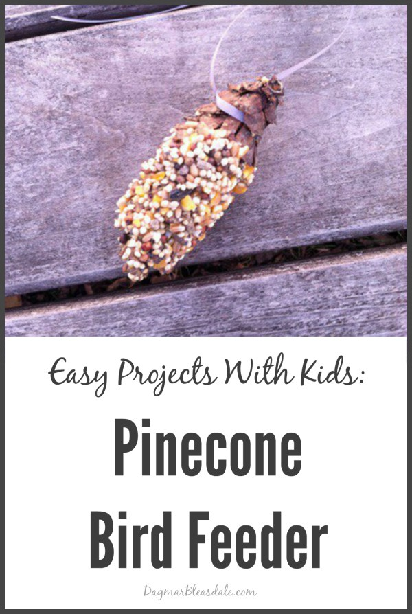 Pinecone bird feeder - and 13 other simple DIY outdoor weekend projects!