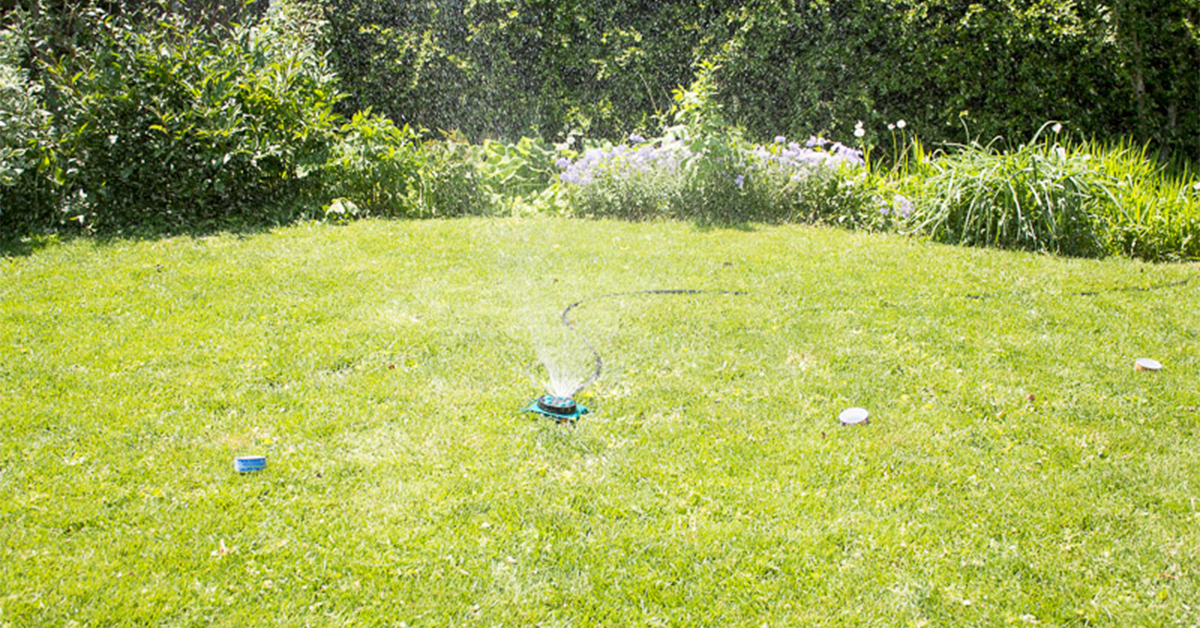 Figure Out How Long To Water Your Lawn With A Diy