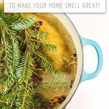3 Fall And Holiday Simmer Pot Recipes
