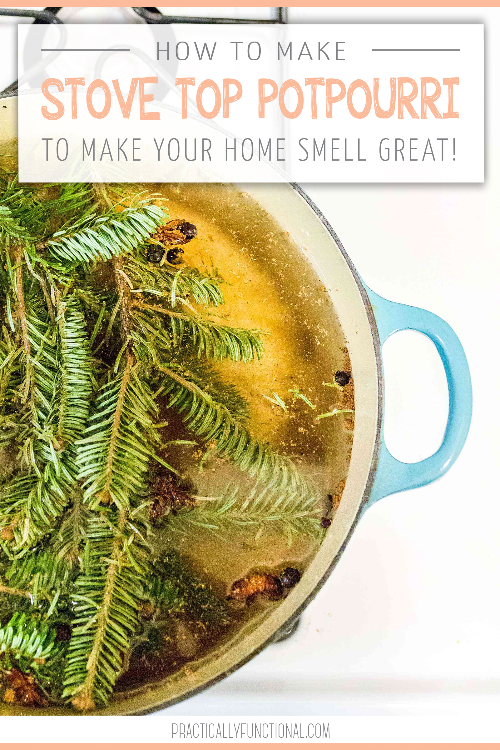 I love having a simmer pot in my home for the holidays it makes everything smell amazing! 3 great simmer pot recipes here!