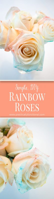 Make DIY rainbow roses with food coloring and water! Plus, get tips on how to make the color brighter or more subtle!