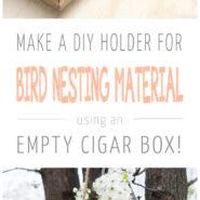 Make a DIY bird nesting material holder from a cigar box