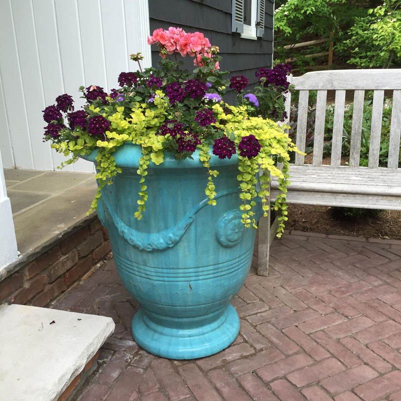 turquoise container planter