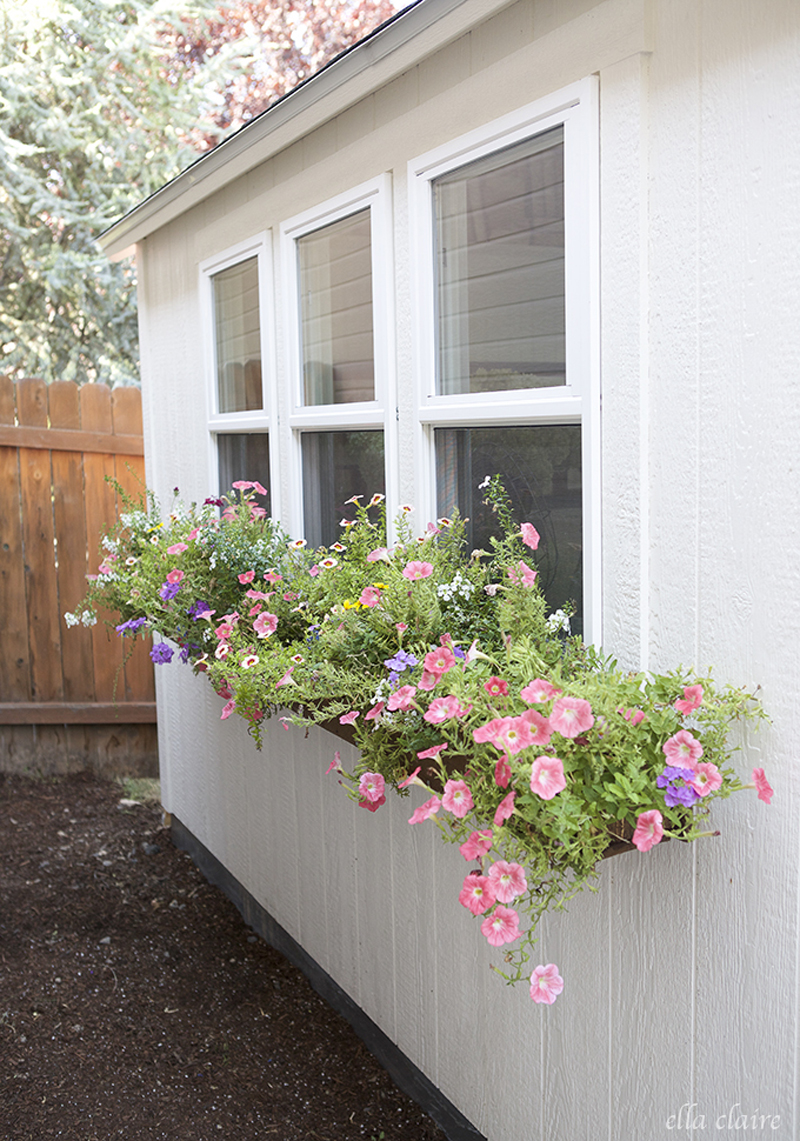 15 Front Yard Landscaping Ideas
