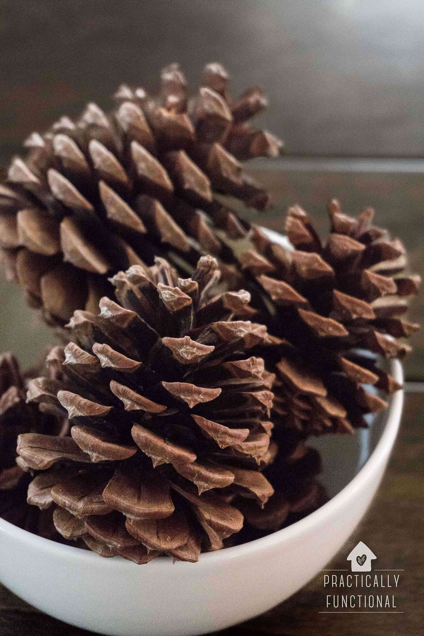 How To Make Cinnamon Scented Pinecones 2 Ways Practically Functional