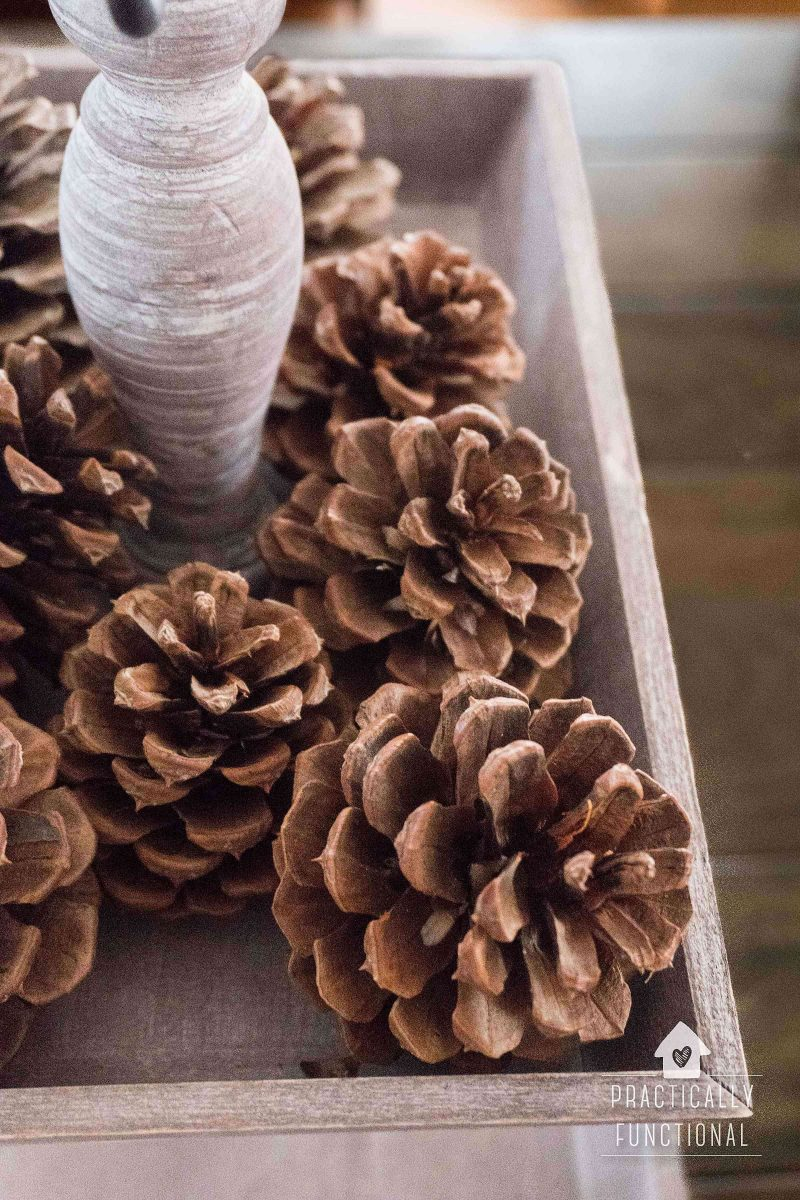How To Make Cinnamon Scented Pinecones