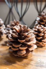 How To Make Cinnamon Scented Pinecones – 2 Ways!