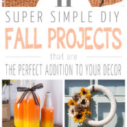 11 Easy DIY Fall Decor Projects
