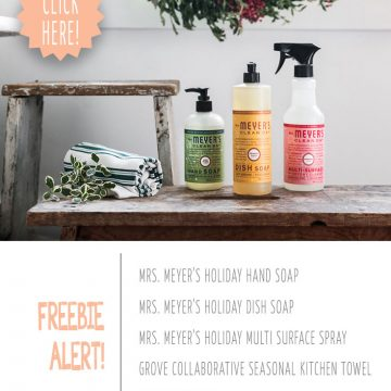 FREE Mrs. Meyer's Holiday Scents Kit From Grove Collaborative!
