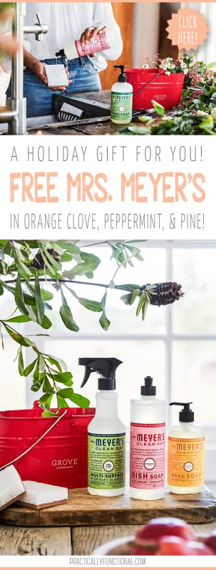 Free mrs. meyers holiday scents pin