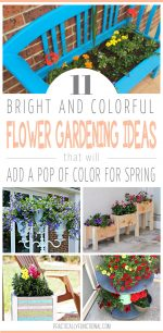 11 Colorful Spring Flower Ideas