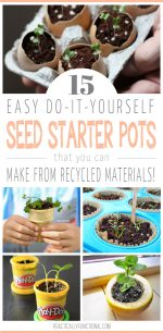 15 DIY Seed Starter Pots You Can Make From Recycled Materials!