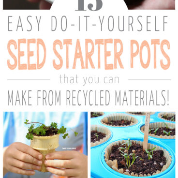 15-DIY-Seed-Starter-Pots-You-Can-Make-From-Recycled-Materials!