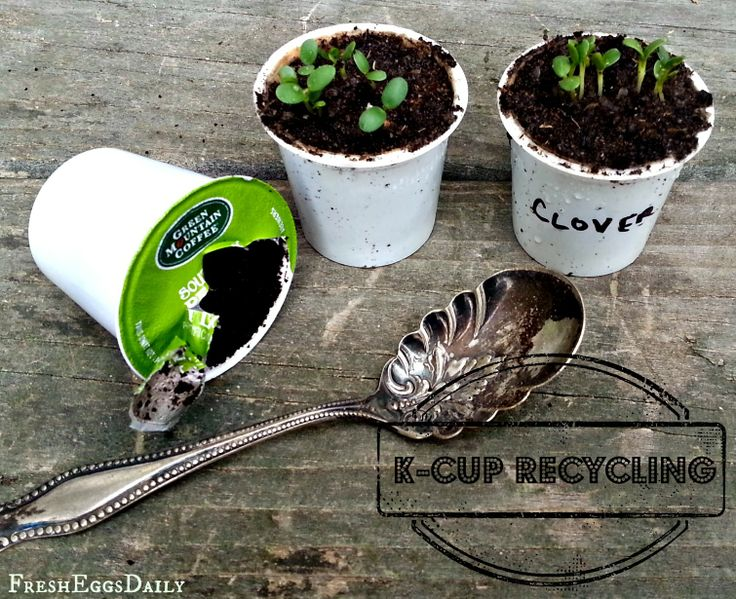 15 DIY Seed Starter Pots You Can Make From Recycled Materials! Garden Planters Out Of Recycled Materials on recycled garden borders, recycled garden furniture, recycled tire garden, recycled garden projects, recycled raised garden beds, recycled bottle garden, recycled stepping stones, recycled rust in garden, recycled garden art, recycled garden containers, recycled materials pallet garden bed, recycled stone edging, recycled disney animation, recycled garden ideas, recycled garden pots, recycled garden gates, recycled paper crafts, recycled garden decor, recycled garden sculpture, recycled garden items,
